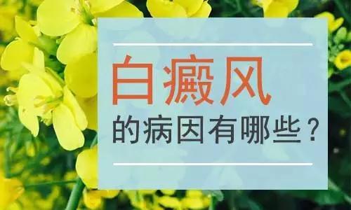 <a href=https://www.kmpifu.cn/ target=_blank class=infotextkey>云南白斑医院</a>哪家好:环境污染会导致白癜风吗?