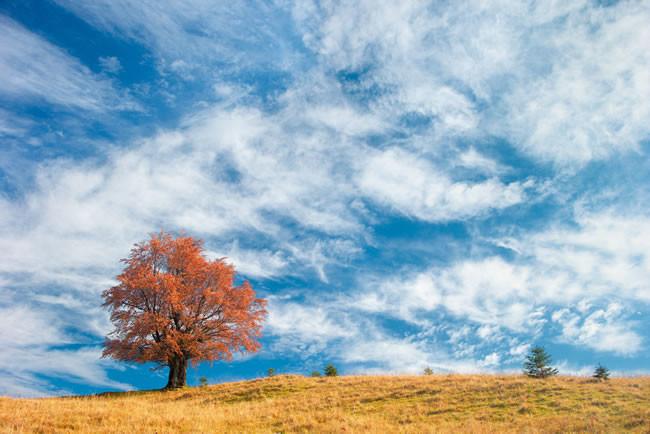 秋冬季白癜风患者要注意什么